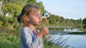 Leuk meisje met de blazende paardebloem van het blondehaar tijdens een zonnige dag in het park op meerachtergrond Langzame Motie stock video