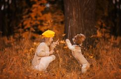 Leuk meisje om hond in het de herfstbos op te leiden royalty-vrije stock foto's