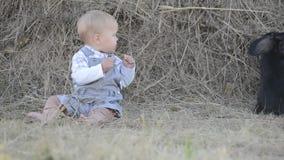 Leuk mooi lachend babymeisje op gras met wit stock video