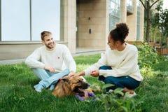 Leuk paar die aardige witte sweaters dragen die met hond spelen royalty-vrije stock afbeeldingen