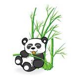 Leuk Panda Bear in Bamboe Forrest 02 Royalty-vrije Stock Foto's