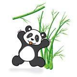 Leuk Panda Bear in Bamboe Forrest 05 Stock Foto