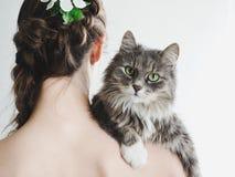 Leuk, pluizig katje en gevende vrouw stock foto