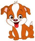 Leuk puppy Stock Afbeelding