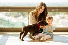 Leuk puppy die een klein meisje kussen royalty-vrije stock afbeelding