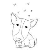 Leuk puppy pitbull Royalty-vrije Stock Afbeeldingen