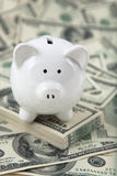 Leuk Spaarvarken op een stapel van contant geld Stock Foto