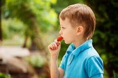 Leuk weinig jongen die een rode aardbei eten royalty-vrije stock afbeelding