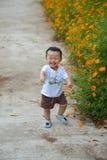 Leuk weinig kindjongen in aard Stock Foto's