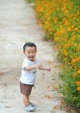 Leuk weinig kindjongen in aard Stock Foto