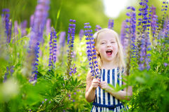 Leuk weinig kleutermeisje die pret op mooi bloeiend lupinegebied hebben stock foto's