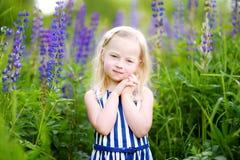 Leuk weinig kleutermeisje die pret op mooi bloeiend lupinegebied hebben royalty-vrije stock afbeeldingen