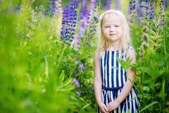 Leuk weinig kleutermeisje die pret op mooi bloeiend lupinegebied hebben stock afbeelding