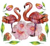Leuk Weinig Prinses Abstract Background met Roze Flamingoillustratie Stock Afbeeldingen