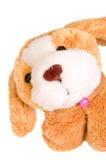 Leuk Weinig Puppy Royalty-vrije Stock Afbeelding