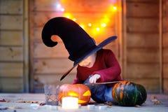 Leuk weinig tovenaar met toverstokje en hefboom-o-lantaarns Stock Fotografie
