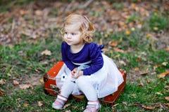 Leuk weinig zitting van het peutermeisje op koffer in de herfstpark Het gelukkige gezonde baby genieten die met ouders lopen zonn stock foto's