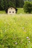 Leuk weinig Zwitsers bergchalet met rode vensterblinden royalty-vrije stock foto