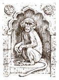 Leuke aap of uitstekende primaat Getrokken hand, gegraveerd wild dier de dierkunde Afrikaans symbool Vector illustratie affiche royalty-vrije illustratie