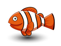 Leuke Anemonefish-beeldverhaalvector Royalty-vrije Stock Foto
