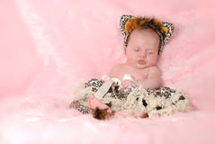 Leuke baby Royalty-vrije Stock Afbeelding
