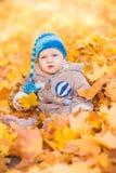 Leuke baby in de herfstbladeren Royalty-vrije Stock Foto's