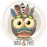 Leuke Beeldverhaal stammenuil met veren royalty-vrije illustratie
