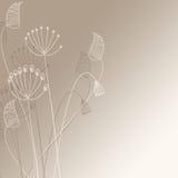 Leuke bloemenillustratie Stock Fotografie