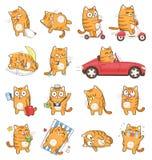 Leuke Cat Character met verschillende emoties Vector Illustratie