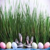 Leuke creatieve foto met paaseieren, sommige eieren als Pasen-Bu Royalty-vrije Stock Foto's