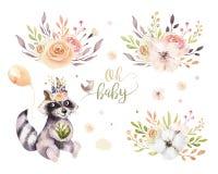 Leuke de wasbeer dierlijke affiche van de waterverf Boheemse baby voor nursary met boeketten, geïsoleerde het bos van het kindere Stock Foto
