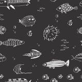Leuke de zomervissen Naadloos patroon Royalty-vrije Stock Afbeelding
