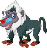 Leuke die baviaan op witte achtergrond wordt geïsoleerd Stock Foto