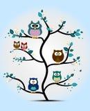 Leuke die uilen op een boom worden neergestreken Stock Fotografie