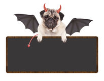 Leuke duivelse pug puppyhond omhoog gekleed voor Halloween, die leeg die teken houden, op witte achtergrond wordt geïsoleerd Stock Afbeelding