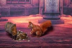 Leuke eekhoorn Royalty-vrije Stock Afbeeldingen