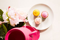 Leuke en kleurrijke yummy cupcakes Royalty-vrije Stock Foto