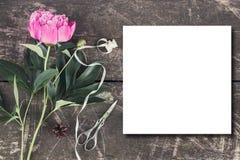 Leuke en modieuze brandmerkende het verstandpioenen van de modelfoto Royalty-vrije Stock Afbeeldingen