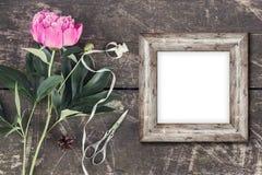 Leuke en modieuze brandmerkende het verstandpioenen van de modelfoto Royalty-vrije Stock Fotografie