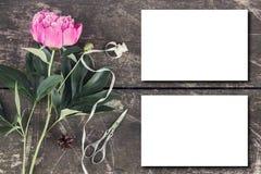 Leuke en modieuze brandmerkende het verstandpioenen van de modelfoto Stock Afbeelding