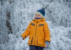 Leuke Europese jongen in een sneeuwbos royalty-vrije stock foto's