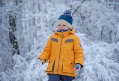 Leuke Europese jongen in een sneeuwbos stock fotografie