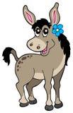 Leuke ezel met bloem Stock Foto