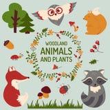 Leuke geplaatste dieren Vector illustratie Stock Foto's
