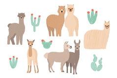 Leuke geplaatste Lama, Alpaca en cactussen Hand getrokken beeldverhaal kleurrijke vectorillustratie royalty-vrije illustratie