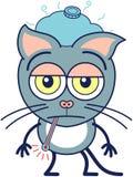 Leuke grijze kat die ongemotiveerd en ziek voelen royalty-vrije illustratie