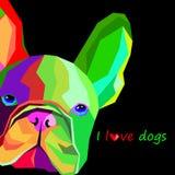 Leuke het huisdierbuldog het Frans van het hondras stock illustratie
