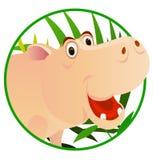 Leuke hippo Stock Afbeeldingen