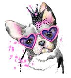 Leuke hond De grafiek van de hondt-shirt Stock Foto's