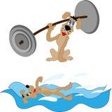 Leuke hond die in de oceaan op een vlot zwemmen Royalty-vrije Illustratie